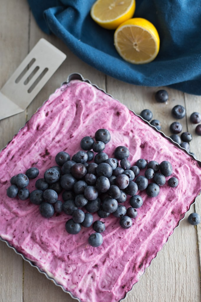 Lemon Blueberry Swirl Frozen Yogurt Bars