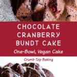 Pinterest image for Chocolate Cranberry Bundt Cake - long pin 1.