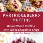 Pinterest image for Partridgeberry Muffins - long pin.