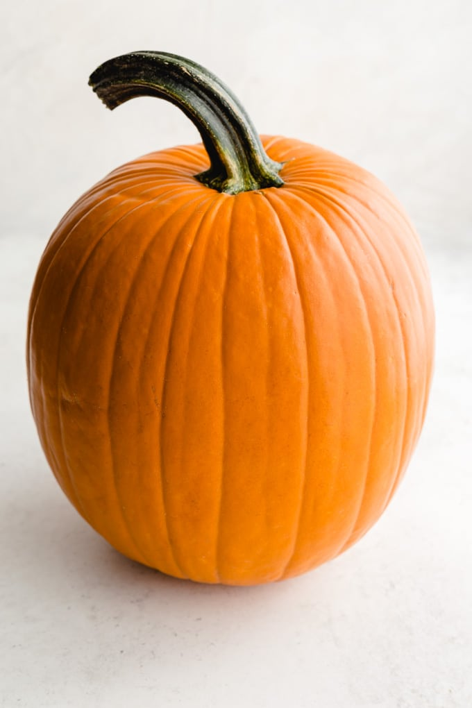 Up close image of a large orange pumpkin.