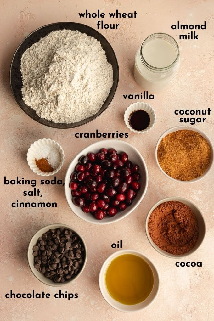 Ingredients to make a chocolate cranberry bundt cake arranged individually and labelled.