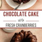 Pinterest image for Chocolate Cranberry Cake - long pin 1.