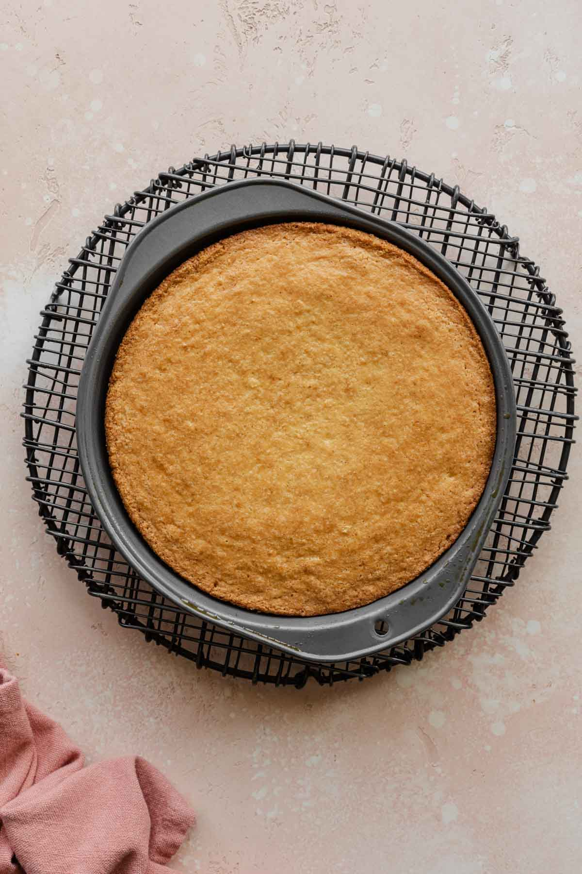 Overhead of almond flour cake cooling in a pan on a wire rack.
