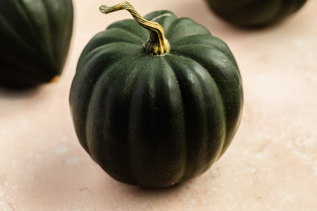 Side view of a whole acorn squash.